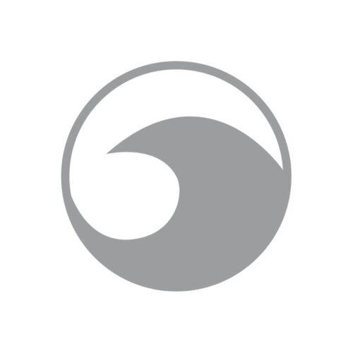terapija_tinitus_zvykamu_okeany